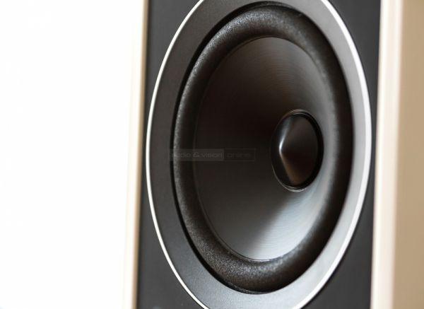 AE 305 álló hangfal mélysugárzó