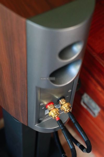 Audiovector R1 Signature hangfal hátlap