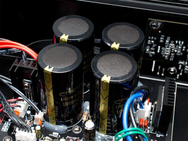 Emotiva BasX capacitors